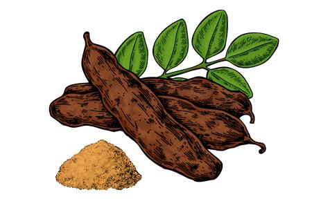 graines de caroubier