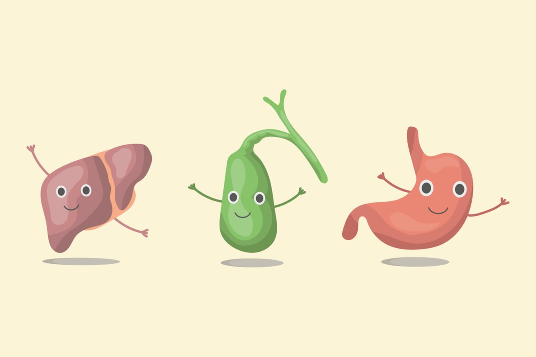 Comment se déroule une cholécystectomie sous laparoscopie ?